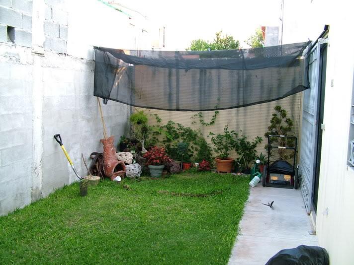 Como adelantar la cosecha de la marihuana grow shop for Hacer un jardin en un patio